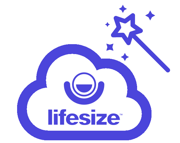 Lifesize One-time Meetings - jusqu´à 249 users - 1 yr