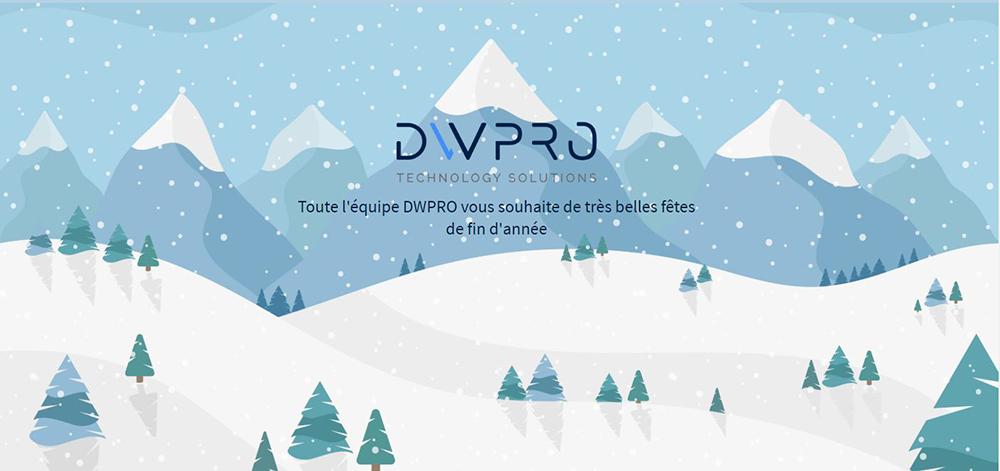 DWPRO | Vous souhaite de très belles fêtes de fin d´année